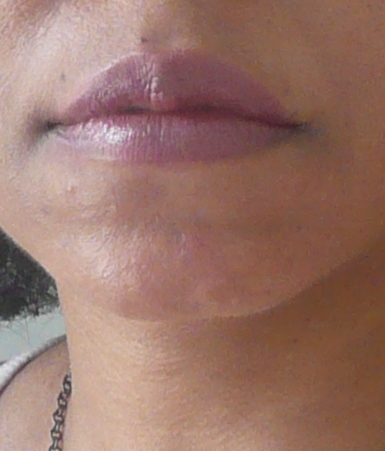 Palladio Lip Liner Cabernet + Smashbox Lip Tech Peony