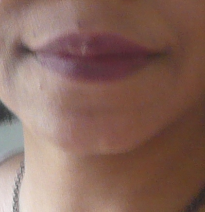 Palladio Lip Liner Cabernet wearing